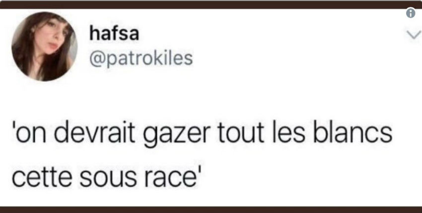 Hafsa Askar, vice présidente de l'UNEF qui se moque de l'incendie de Notre Dame, voulait déjà « gazer tout les blancs cette sous race »