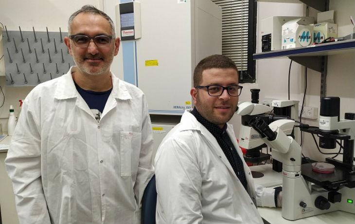 Les chercheurs de l'Université de Tel-Aviv découvrent un traitement potentiel de la leucémie
