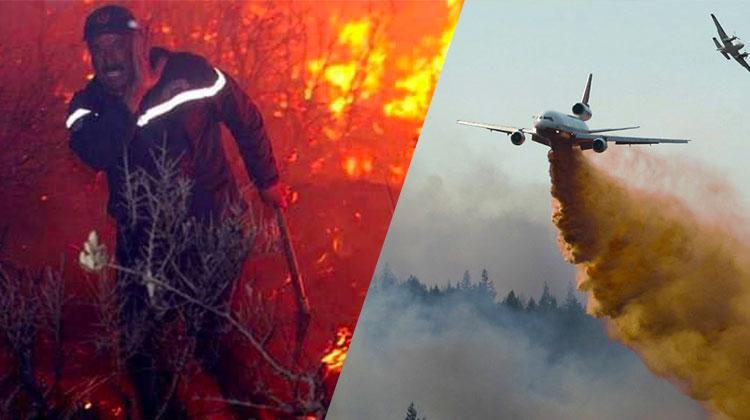 La différence entre l'Algérie et Israel face aux incendies