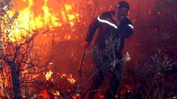 incendie kabylie 20193