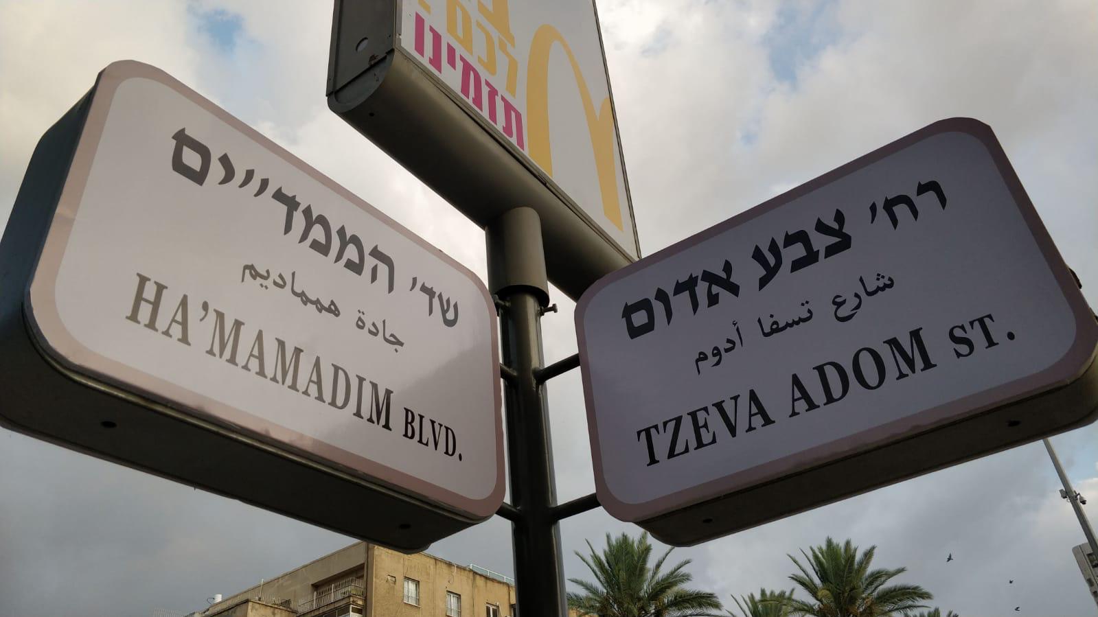 Manifestation pour sécurite Victoire d'Israel4