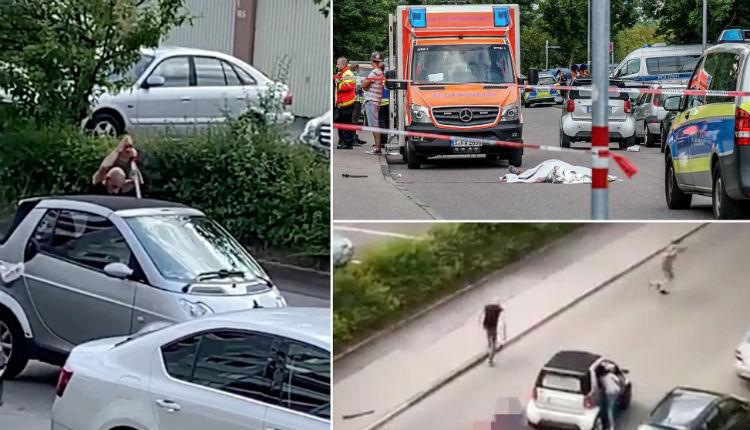 L'assassin de Wilhelm, tué de plusieurs coups de sabre en pleine rue, serait un Syrien arrivé en 2015, connu des services de police. Sur les réseaux sociaux « Danke Merkel »