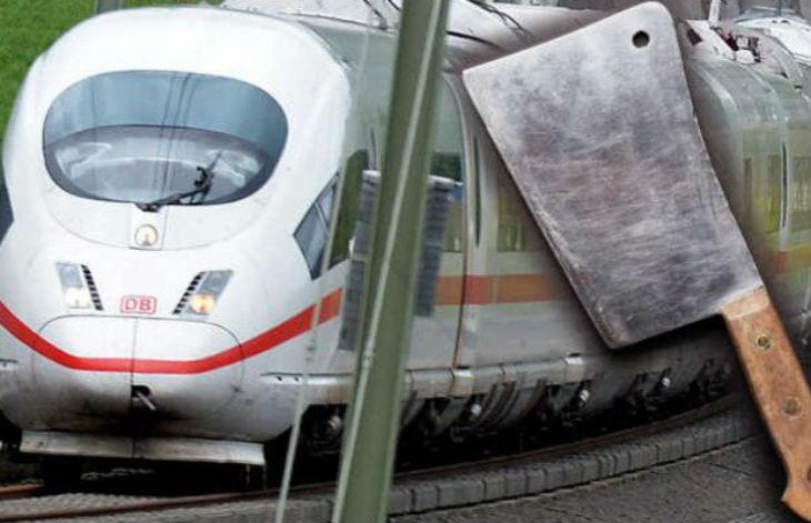 Allemagne : un migrant syrien, armé d'une hache de boucher, menace de « tuer tout le monde » si on l'oblige à payer son billet de train