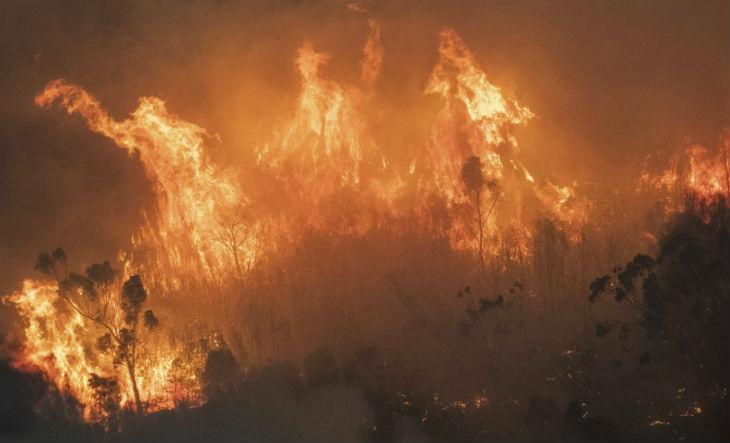 Ce que les médias français ne disent pas, les sapeurs-pompiers d'Australie accusent «C'est l'idéologie des verts, et pas le changement climatique, qui empire les feux de brousse»