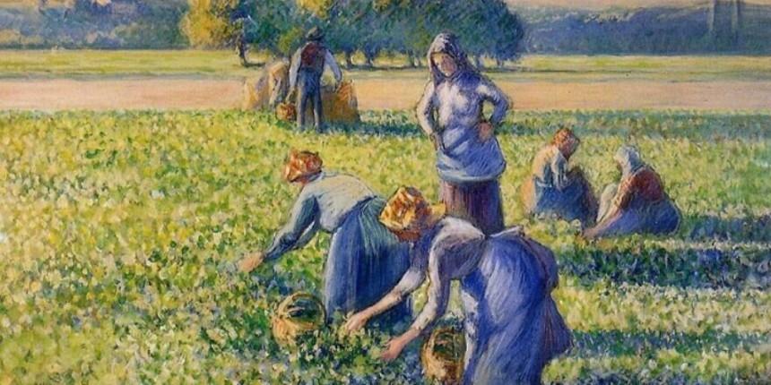 Un tribunal français décide qu'une peinture de Pissaro a été volée pendant la Shoah et doit être restituée à la famille du collectionneur juif