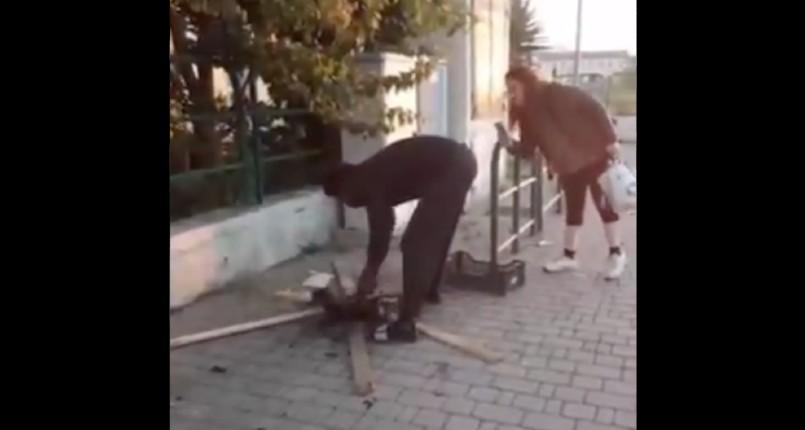 [Vidéo] Italie : un migrant africain fait rôtir un chaton en pleine rue