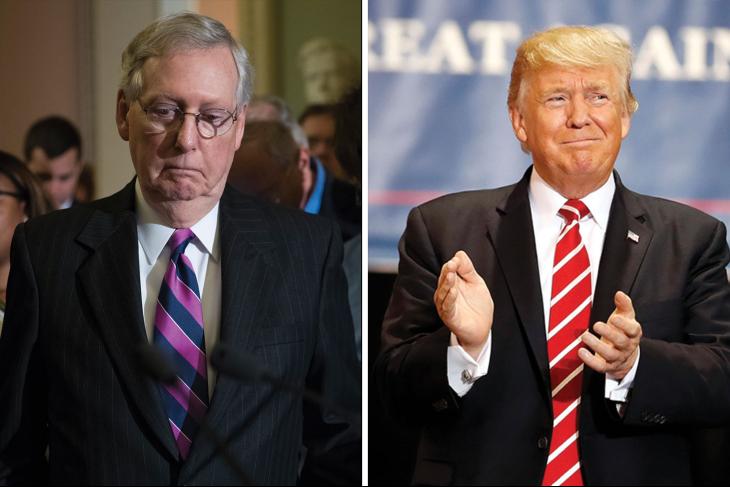 Sondage : les électeurs républicains ont perdu confiance en McConnell et appuient massivement le Président Trump