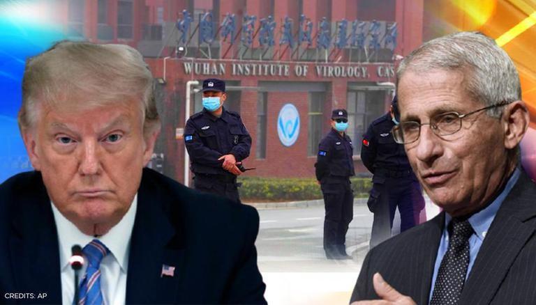 Surréaliste: Des scientifiques d'Harvard avouent avoir menti sur la possible fuite du labo de Wuhan parce que Trump l'avait dit en premier